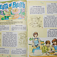 fiesta of fruits