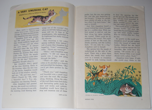 Jack and jill mag aug 1958 very unusual cat