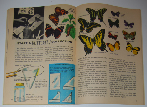 Golden special summer 1971 butterflies 2