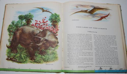 Dinosaurs book 10
