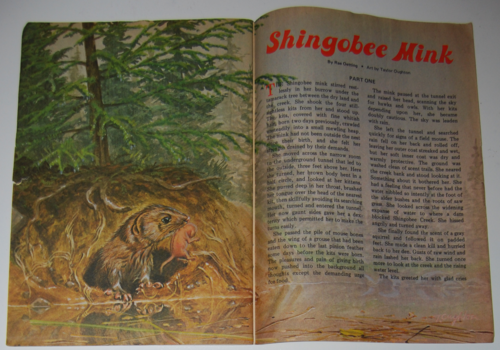 Jack and jill mag aug sept 1979 mink
