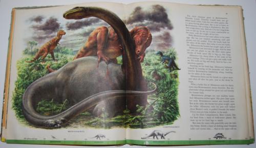 Dinosaurs book 8