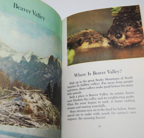 Walt disney's true life adventures book 9