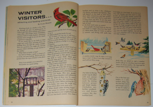 Golden special winter 1971 birds