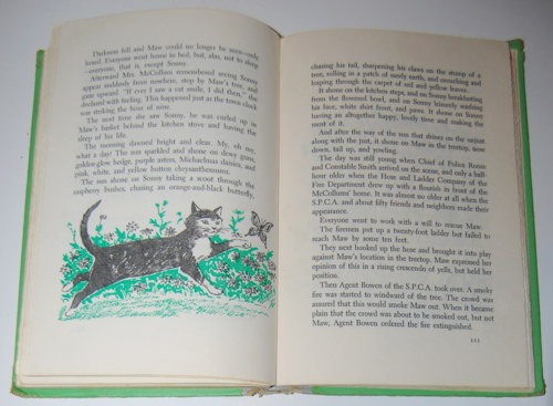 Best in children's books cat story 6