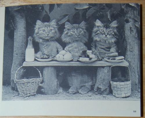4 little kittens 9