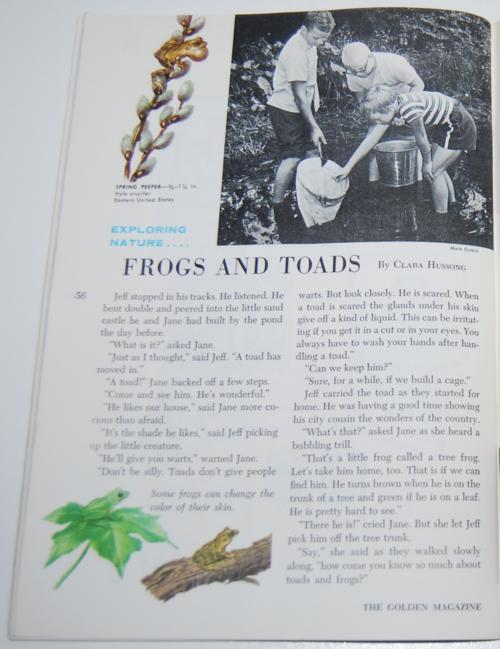 Golden magazine march 1964 11