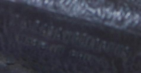 Parasaurolophus 5