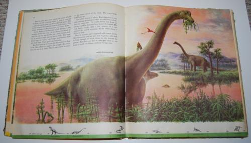 Dinosaurs book 6