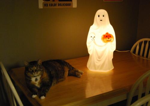 Halloween 2012 x