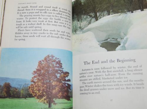 Walt disney's true life adventures book 7