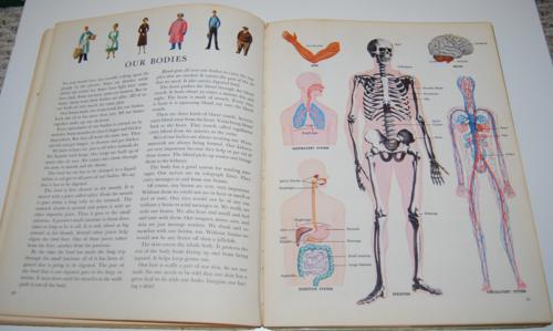 Golden book of science 5
