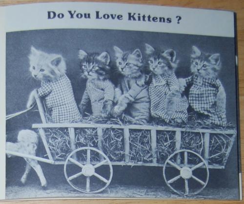 4 little kittens 2