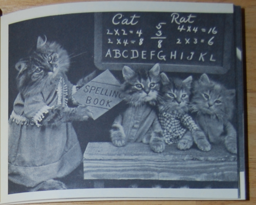 4 little kittens 7