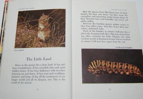 Walt disney's true life adventures book 5