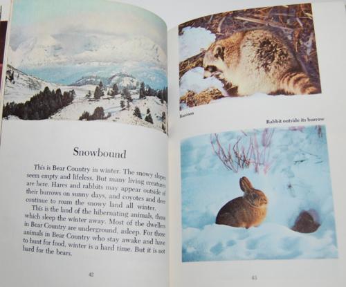Walt disney's true life adventures book 8
