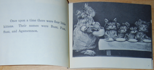 4 little kittens 3