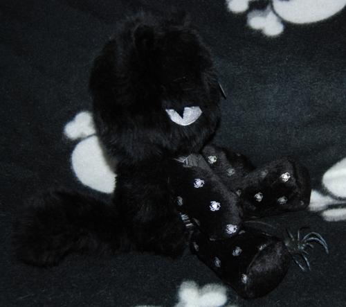 Emily cats spidey 3