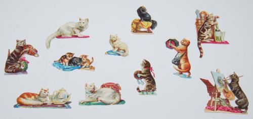Tiny cats ephemera