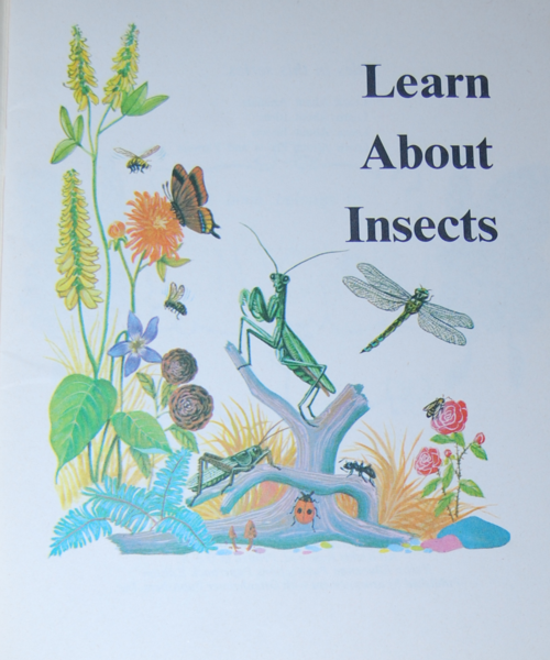 Learn about insects 2