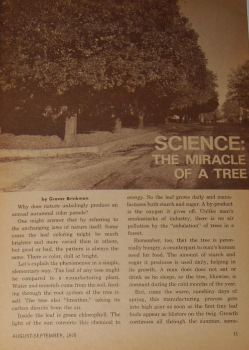 Golden magazine august september 1970 trees