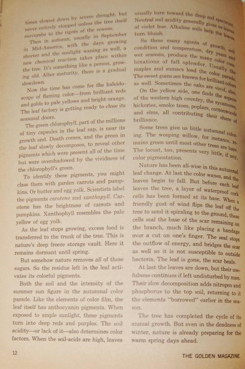 Golden magazine august september 1970 trees 2