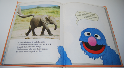Grover's book of cute little baby animals 5