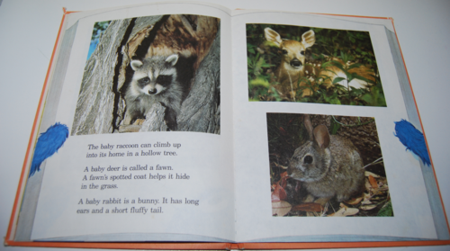 Grover's book of cute little baby animals 3