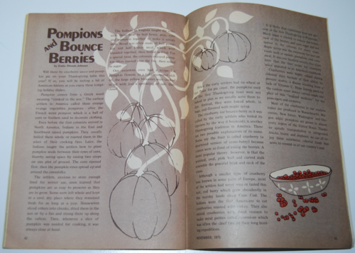 Golden magazine november 1970 2