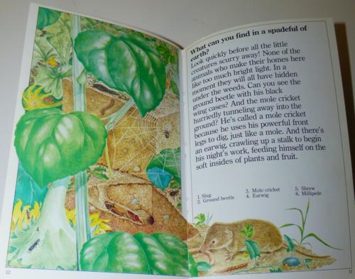 Animals underground 1985 1