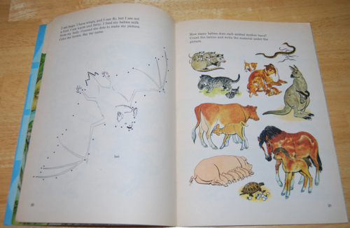 All kinds of animals 4
