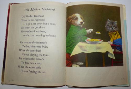 The little kittens nursery rhymes 8