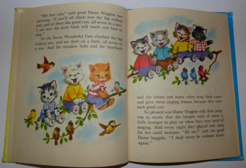 The 7 wonderful cats 8