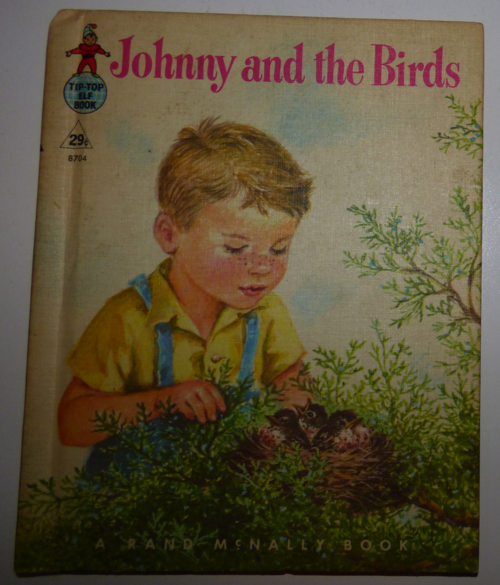 Johnny & the birds rand mcnally