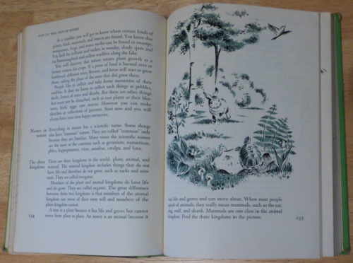Girl scout handbook 1956 5