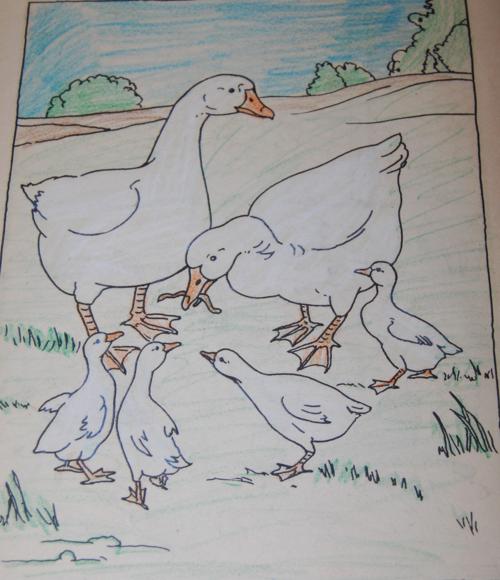 Vintage farm friends coloring book 6