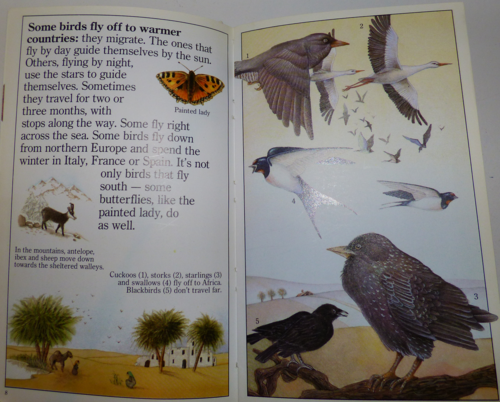 Animals in winter 1985 4