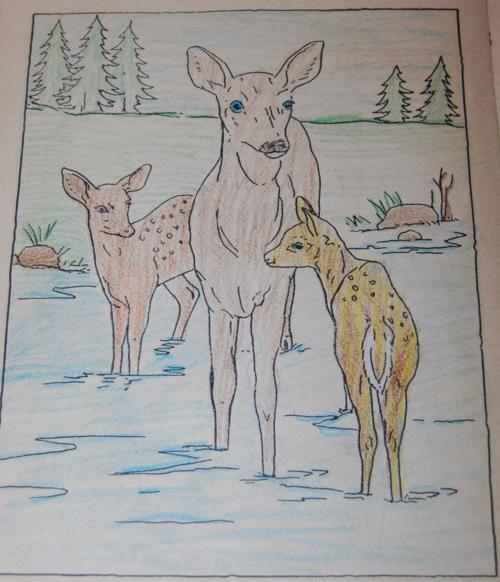 Vintage farm friends coloring book 5