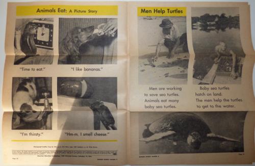 Weekly reader summer 1964 1
