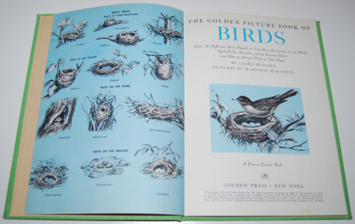 Golden picture book of birds 2