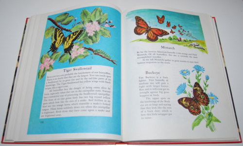 Wonders of nature book 8
