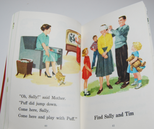 Dick and jane fun with our family 3