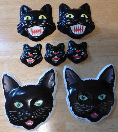 Black cats x