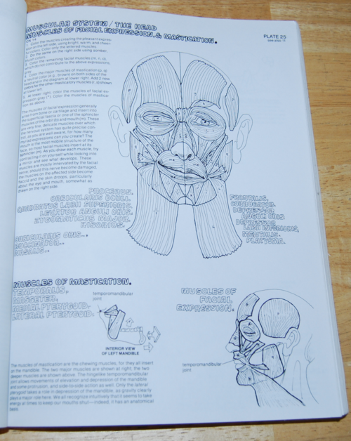 Anatomy coloring book 3