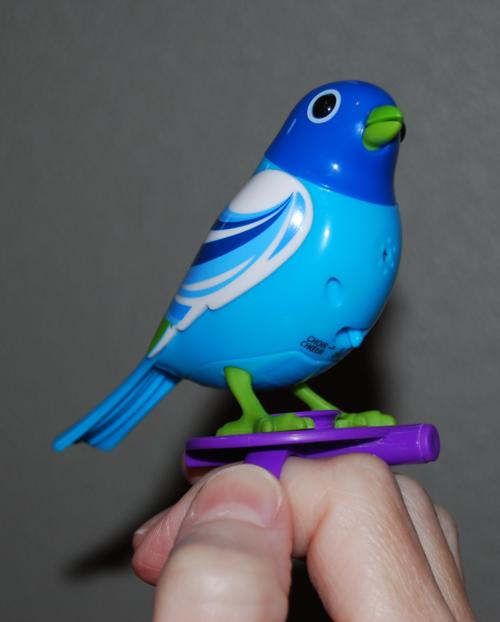 Digibird 5