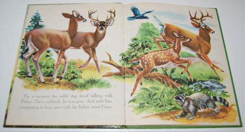 Bambi's children wonder book 4