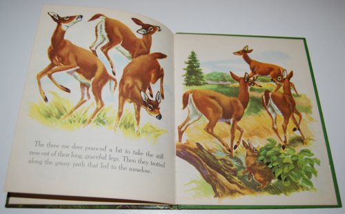 Bambi's children wonder book 7