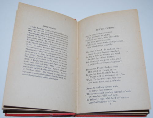 Alice's adventures in wonderland ny book co 1911 4