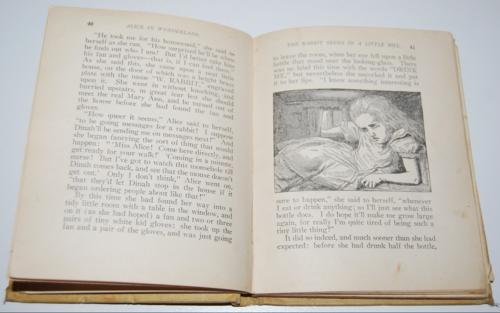 Alice's adventures in wonderland 1897 3