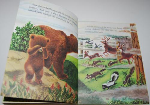 Smokey the bear little golden book 4